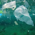 Mare: il 95% dei rifiuti è plastica