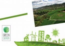 green-grain-heritage-desing - Copia