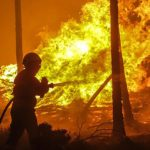 """Incendi: """"Un'emergenza che va ben oltre il periodo estivo"""""""