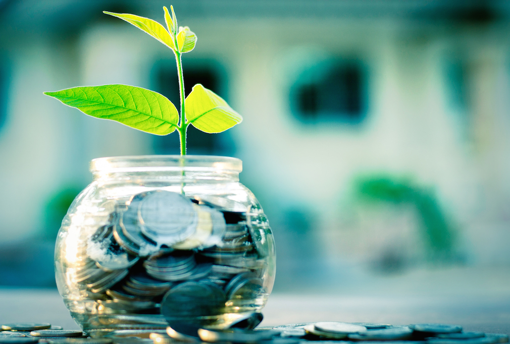 New-beginning-green-plant-bank-money