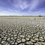 Clima, a un passo dalla catastrofe: l'allarme di 15mila scienziati