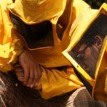 Il tempo delle api, il cinema indipendente in dvd a Natale