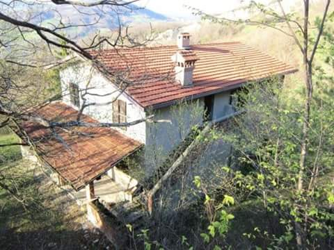 Il tetto, dimora dei ghiri