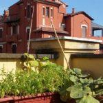 PURO, permacultura e sostenibilità arrivano in città