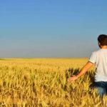 Decolla l'imprenditoria giovanile. E l'agricoltura conquista i ragazzi