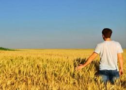 giovani-agricoltura