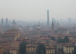 smog1_ant