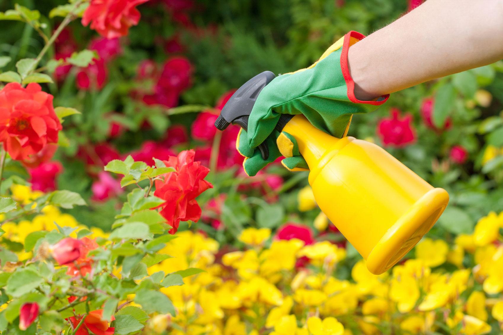 Anche chi vive nelle aree urbane è esposto  a miscele di pesticidi potenzialmente cancerogeni e molto pericolosi per la salute