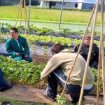 """Agricoltura sociale: """"I giovani con autismo trovano lavoro e crescita"""""""
