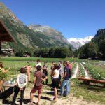 ReStartAlp, un bando per aiutare chi vuole tornare in montagna