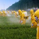 L'Europa dice sì alla fusione Bayer-Monsanto