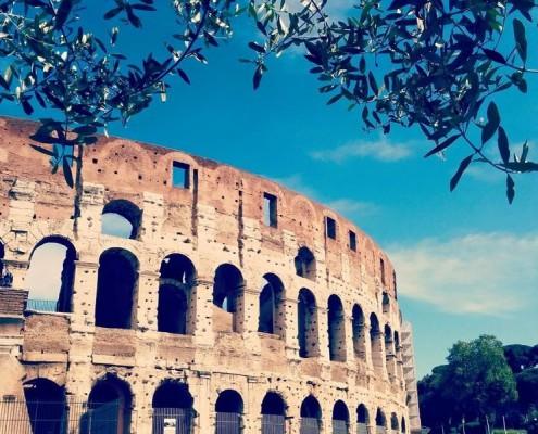 roma-best-practices-1