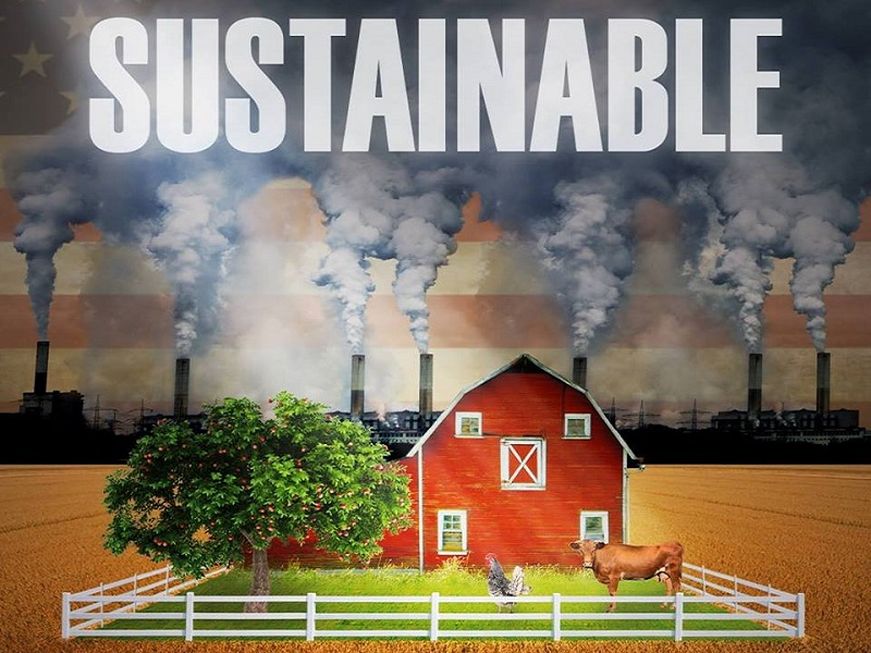 agricoltura intensiva 1