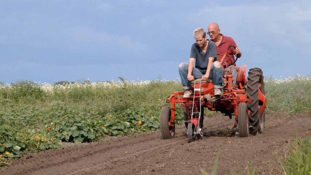 agricoltura intensiva 3