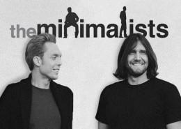 minimalism 1_ant