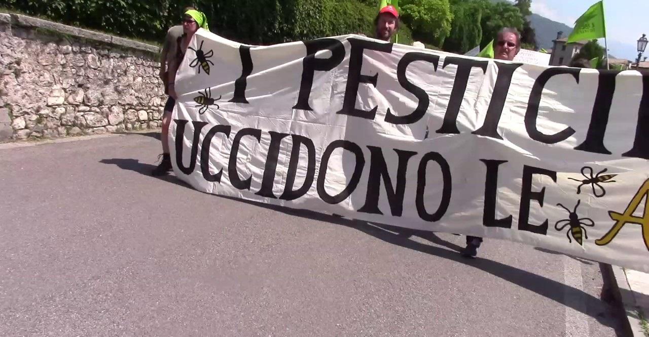 Risultati immagini per No ai pesticidi chimici
