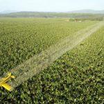 Una marcia per dire no ai pesticidi