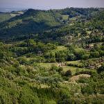 Dall'Italia alla Toscana che Cambia… passando per il Casentino