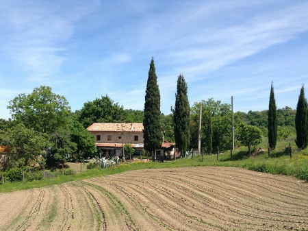 vacanze in toscana 1_ant