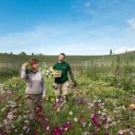"""""""La terra è viva e guarisce"""": gli ortolani degli chef lanciano un nuovo progetto"""