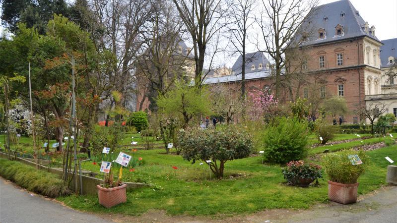 giardino-sostenibile-mostra-mercato-orto-botanico-torino C