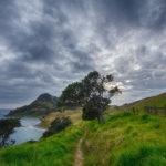 Un viaggio in Nuova Zelanda aiuterà i bambini malati oncologici