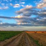 PAC: quale futuro per la Politica Agricola Comune?