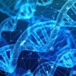 Epigenetica: come si crea la propria salute