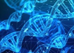 epigenetica