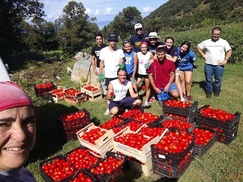 Agricoltura sociale Rigenera