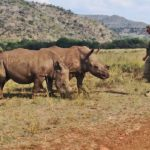 In prima linea per difendere la biodiversità