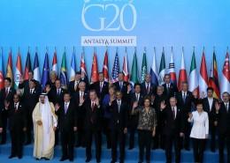 g20_ant