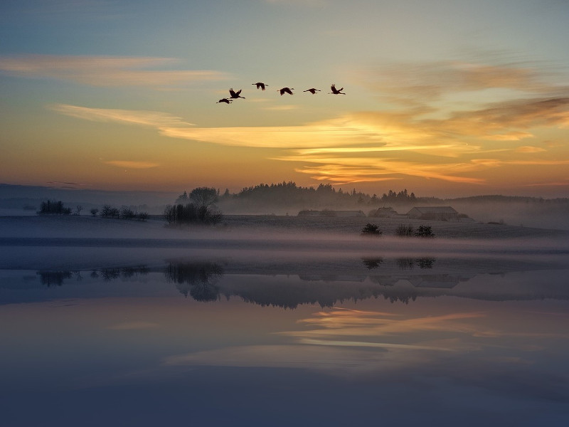 sunset-2570443_1920