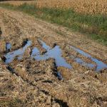 Fanghi: una risorsa per i suoli agricoli, ma solo se non contaminati