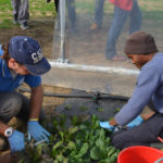 Lombardia: i cesti natalizi della rete di Agricoltura Sociale