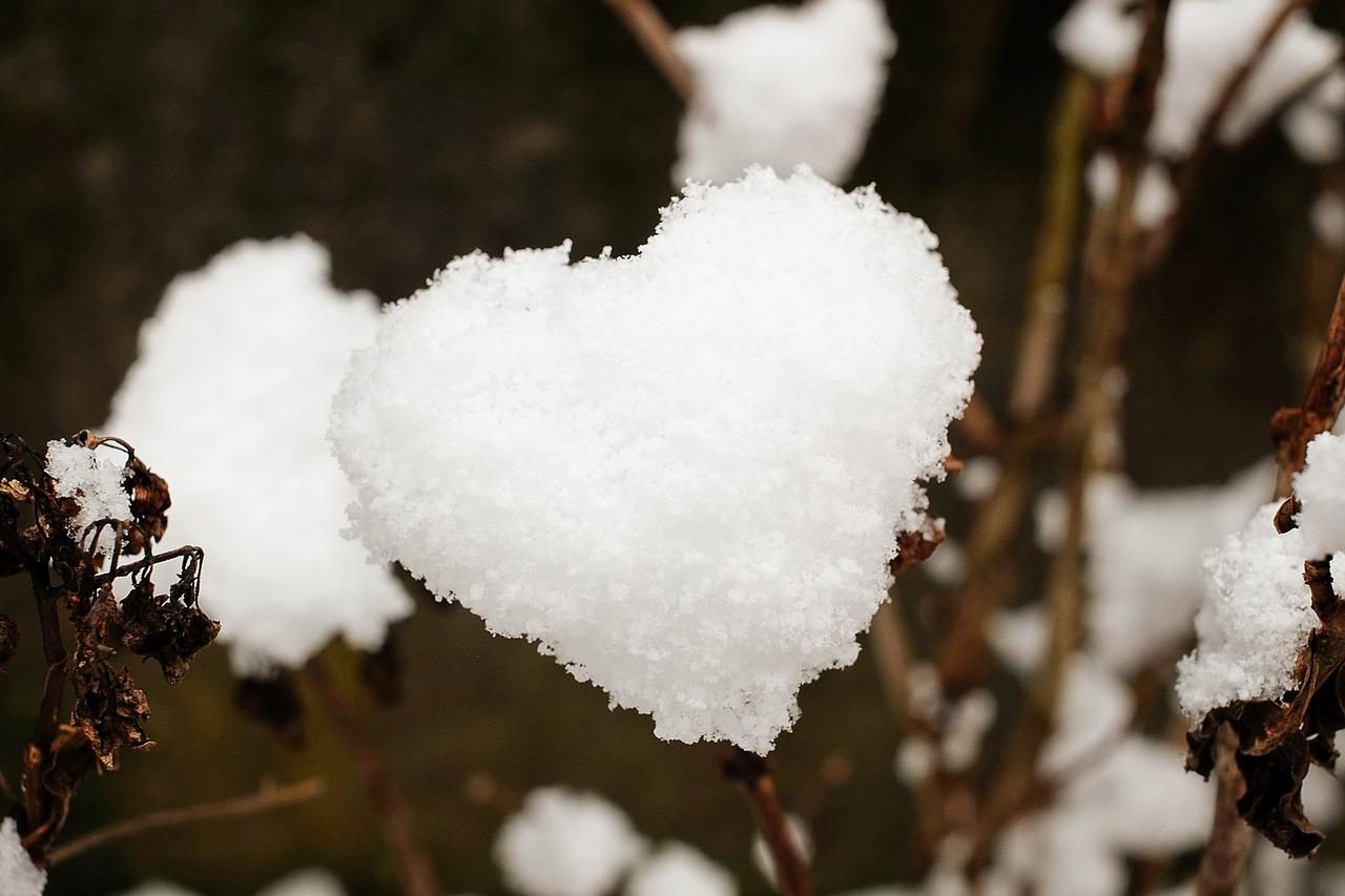heart-1145528_1280