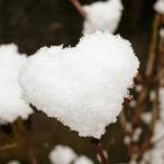 Lo sviluppo transpersonale come via per il cuore umano