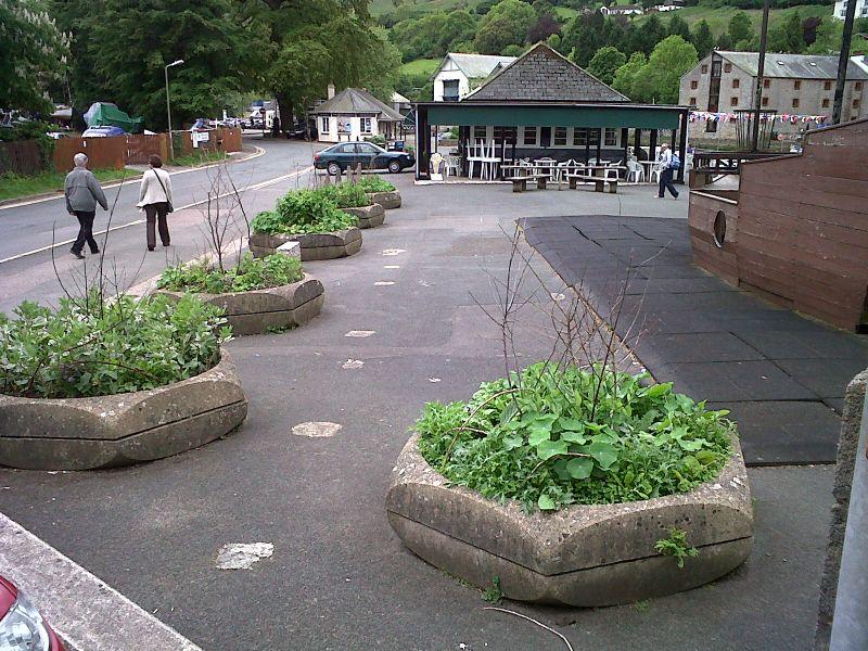 """Piante commestibili nelle aiuole sparse in ogni angolo della città di Totnes: è questo il progetto """"Incredible Edible"""""""