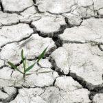 Cop24 sul clima: un accordo che non basta, ma resistiamo