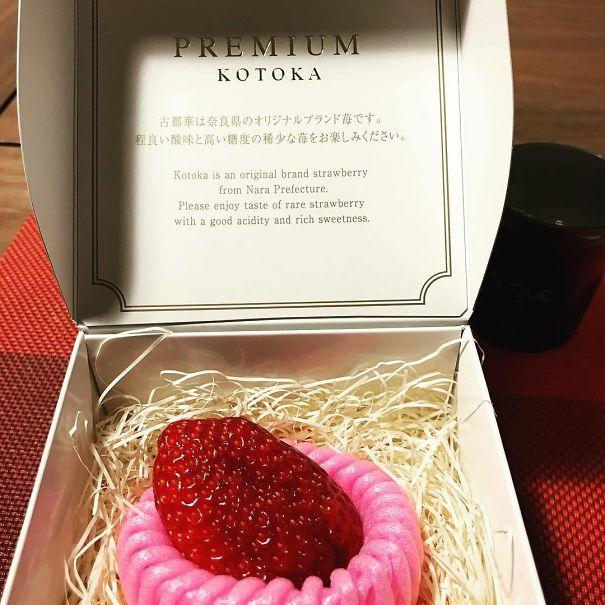 Singole fragole appoggiate su un supporto di plastica e presentate all'interno di un cofanetto. (hiroyamatomoto)