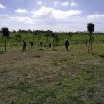 """Un """"sogno trasformato"""" in realtà: a Roma un parco rinascerà grazie alla permacultura"""