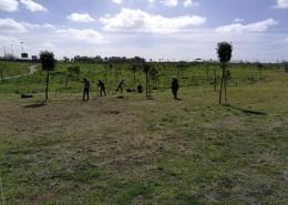 roma-progetto-permacultura