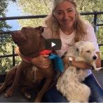 Effetto Palla: quando i social cambiano la vita degli animali – Io faccio così #243