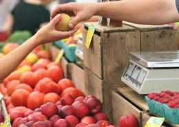 food-priders-fattorini-bicicletta-per-giornata-contro-spreco-alimentare