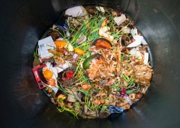 Food-waste-in-restaurants_wrbm_large