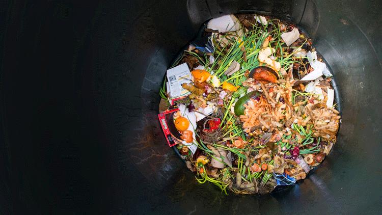 Food-waste-in-restaurants_wrbm_large