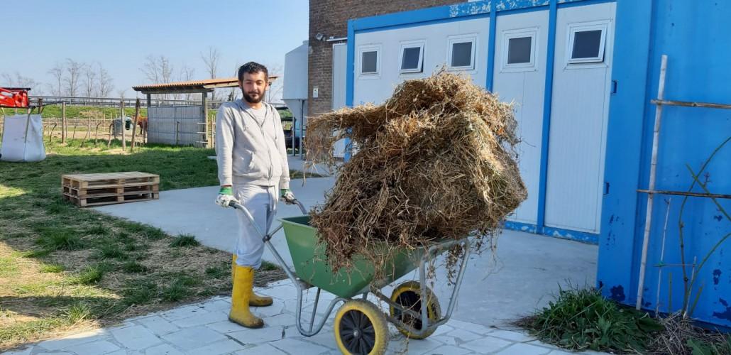 Luca a lavoro presso l'azienda agricola elilu - Agricultura Familiare