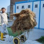 Agricoltura e lavoro cambiano la vita dei giovani con autismo