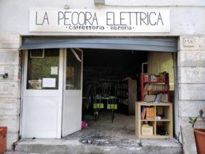 pecora-elettrica-2