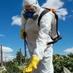 Prosecco: il sindaco impone il biologico nelle aree sensibili